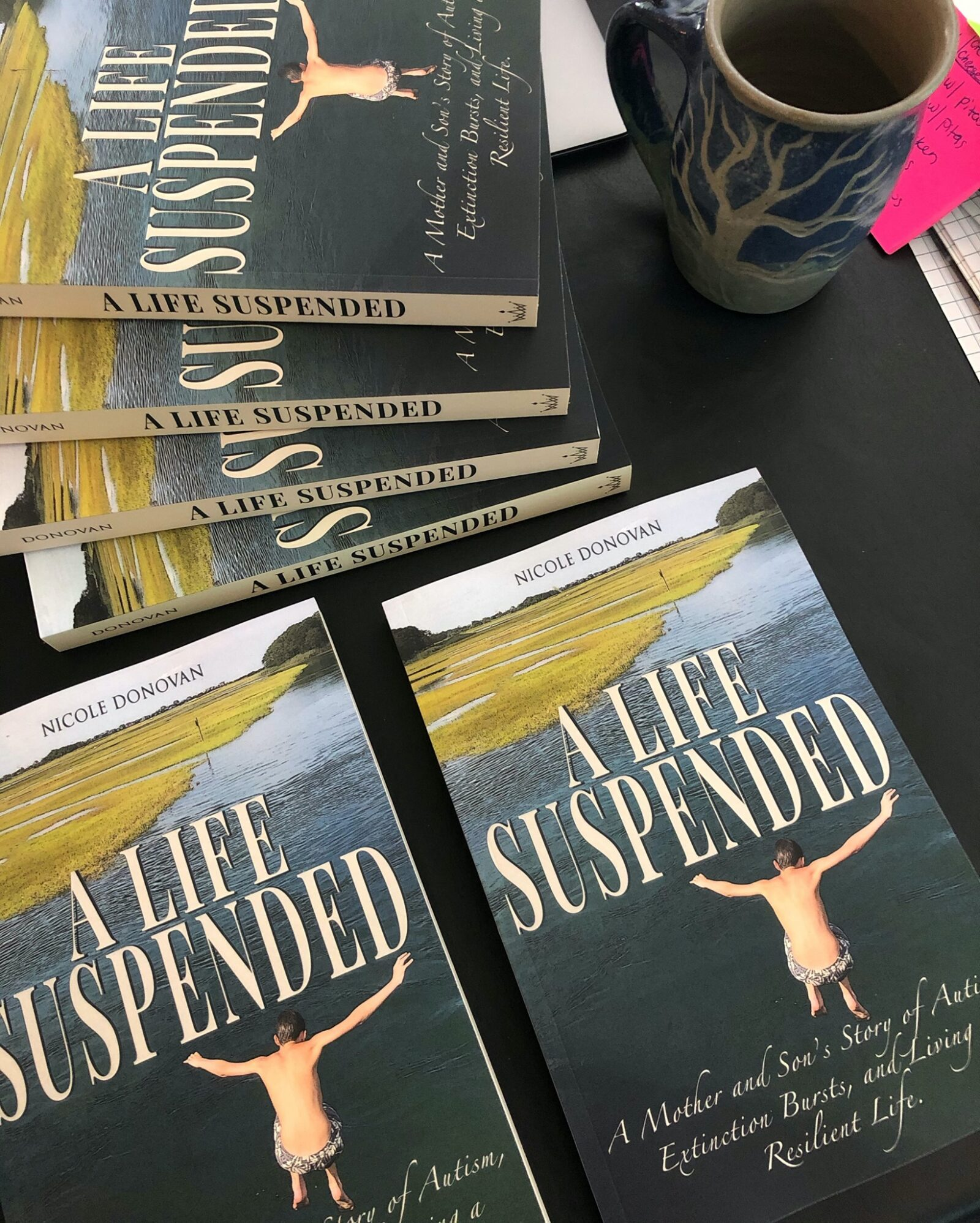 a life suspended, book
